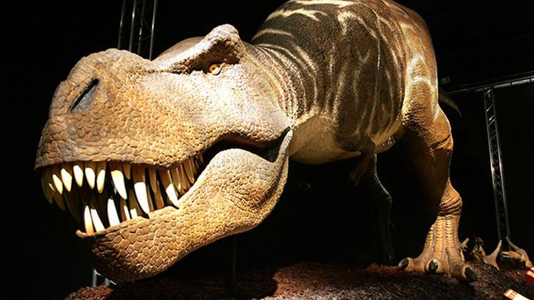 مصادفة اكتشاف دم وكولاجين معا في عظام ديناصور قد تؤدي إلى إعادة كتابة التاريخ