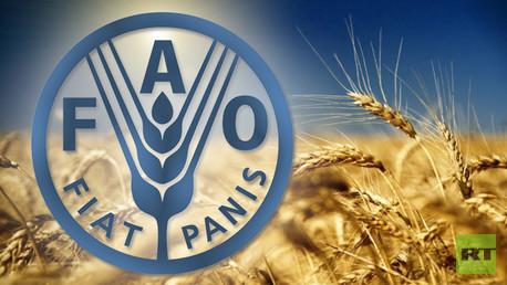 الفاو: أسعار الغذاء العالمية عند أدنى مستوى منذ 2009