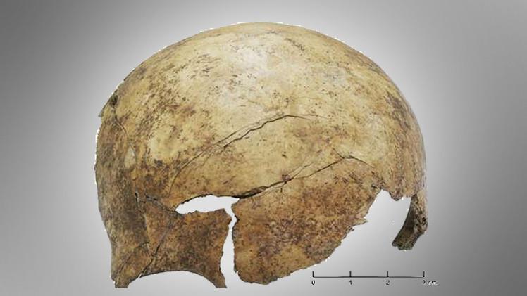 علماء يتوصلون إلى دليل حدوث مجازر في عصور ما قبل التاريخ في أوروبا