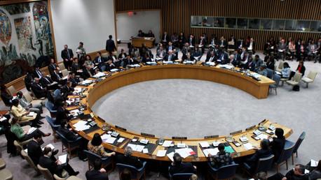 مجلس الأمن الدولي..