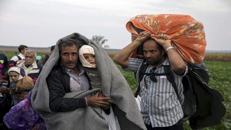 ألمانيا تترجم دستورها إلى العربية وهامبروغ تعلق استقبال اللاجئين