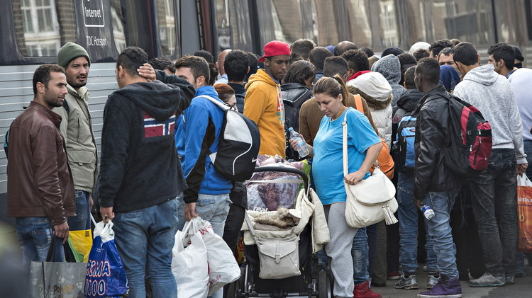 الدنمارك تشدد على اللاجئين شروط الحصول على جنسيتها