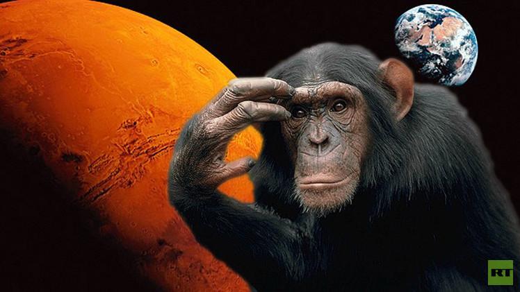 روسيا ترسل قرودا لرحلة إلى المريخ