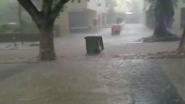 بالفيديو.. صناديق القمامة تحسن السباحة في شوارع إسرائيل