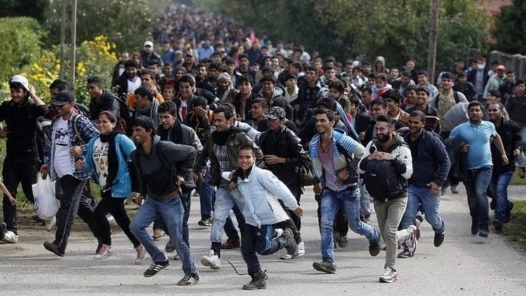 منظمة الهجرة الدولية: وصول أكثر من 30 ألف لاجئ إلى السواحل الأوروبية في نوفمبر الجاري