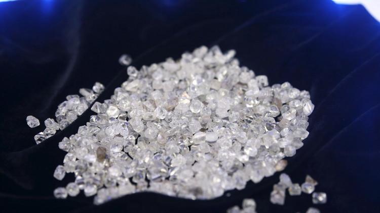 الماس بقيمة 10 ملايين دولار في كومة من القمامة عن طريق الخطأ !