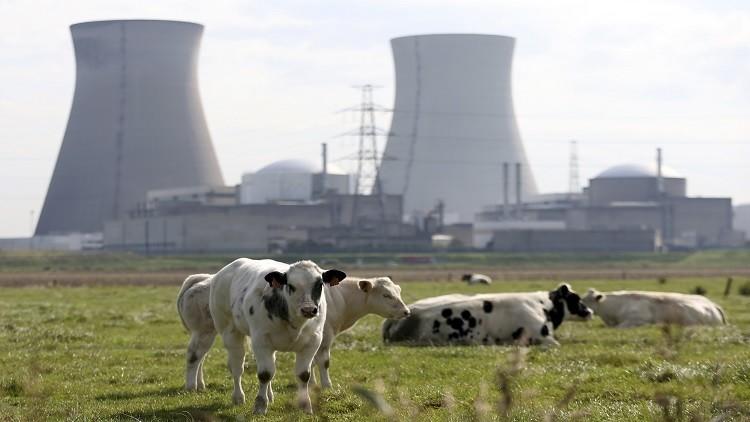 حريق يغلق مفاعلا نوويا في بلجيكا