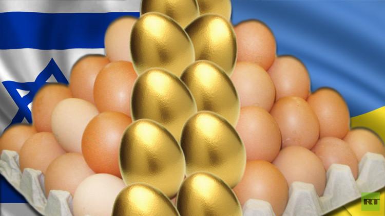 هآرتس: إسرائيل ستدفع الثمن غاليا بسبب بيض أوكرانيا الرخيص