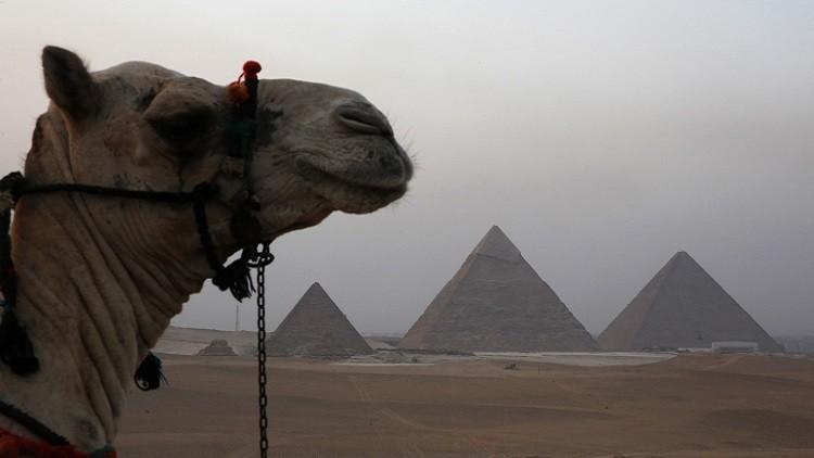 أحجية فرعونية استعصت لأكثر من قرن!