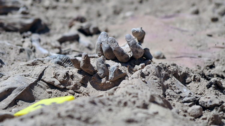 العثور على مقبرة جماعية بريف دير الزور