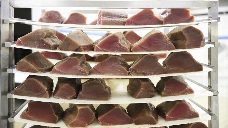عشق اليابانيين للحوم حيتان المنك يجعلهم ينتهكون القانون الدولي