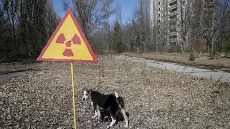 بناء قبة خرسانية ضخمة حول مفاعل تشرنوبيل النووي