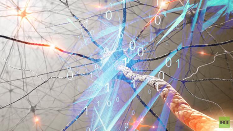 خبراء أمريكيون يصممون لغة لبرمجة عمل الخلايا الحية