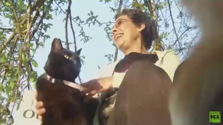 أمريكية تؤوي 28 ألف قطة في منزلها