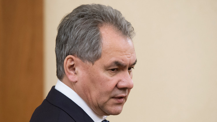 الدفاع الروسية: تمكنا من إزالة الألغام من 180 هكتارا في تدمر