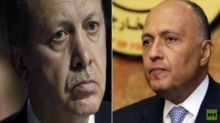 وزير الخارجية المصري يتجاهل أردوغان.. (فيديو)