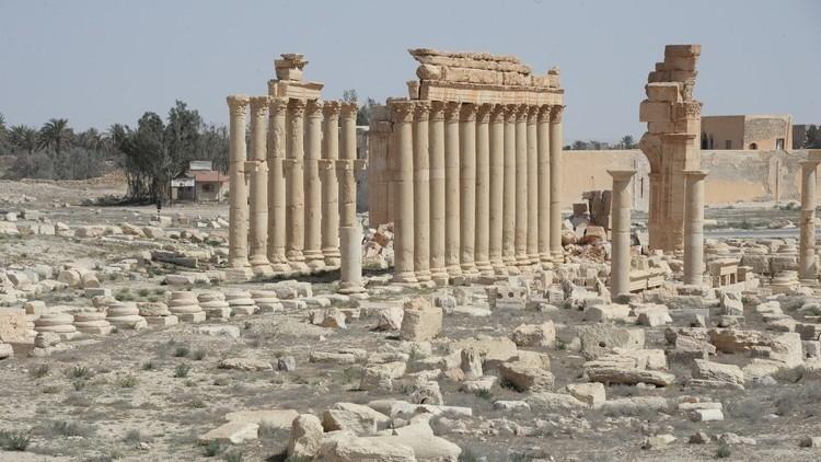 بطولة بروخورينكو في سوريا تلقى صداها في فرنسا