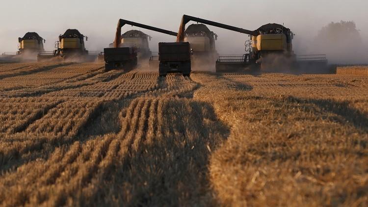 روسيا تتربع على عرش مصدري القمح في العالم