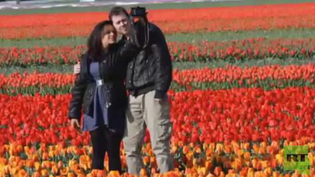 إقبال كبير على معرض الزهور في هولندا