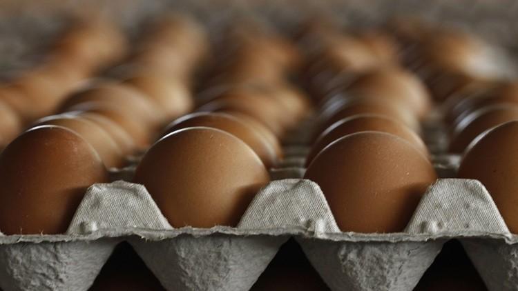 التلغراف: داعش يبيع البيض والدجاج في ليبيا