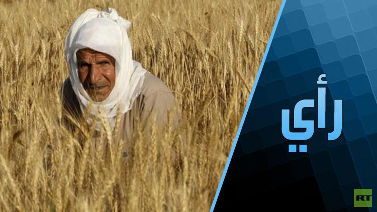 هل تتخلى الحكومة المصرية عن دعم القمح؟