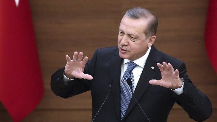 أردوغان: سنحمي حدودنا حتى لو لم نتلق مساعدة