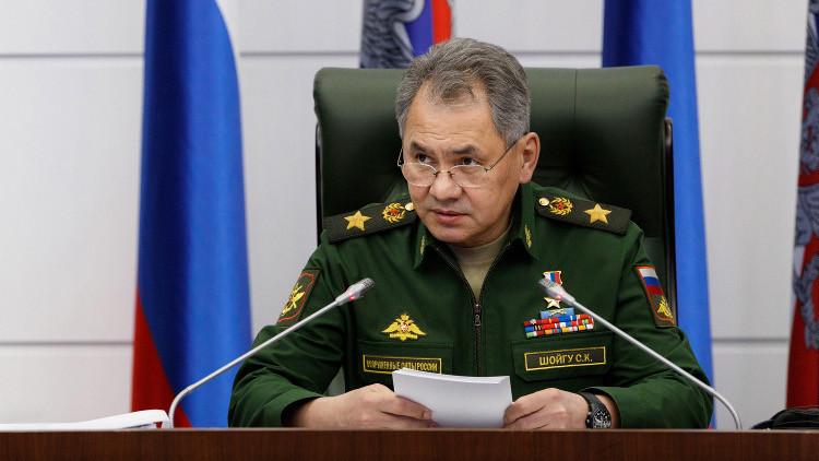 شويغو: نطبق بشكل واسع خبرتنا العسكرية في سوريا