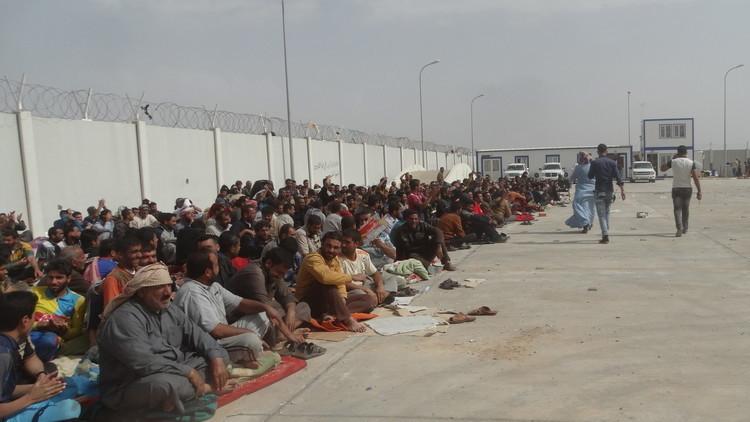 فرار 7 آلاف مدني من الفلوجة