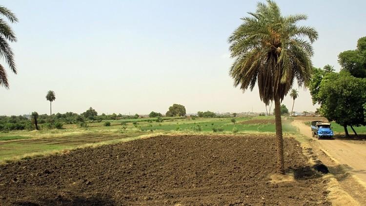لماذا تشتري السعودية أراضي في إفريقيا؟
