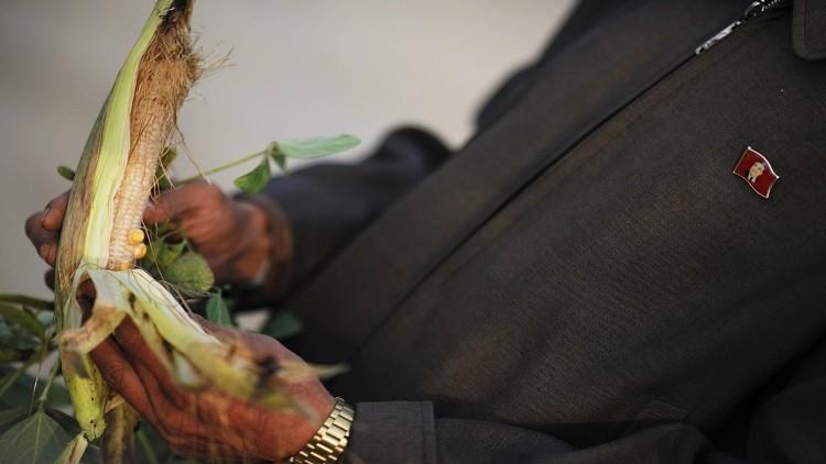 تقرير أممي: 40% من سكان كوريا الشمالية يعانون سوء تغذية