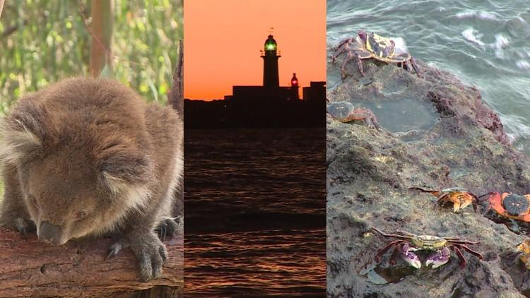 أستراليا.. السياحة في القارة الخضراء