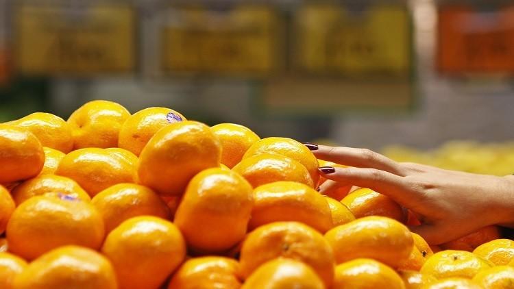 بوادر إيجابية حول استئناف صادرات مصر الزراعية إلى روسيا