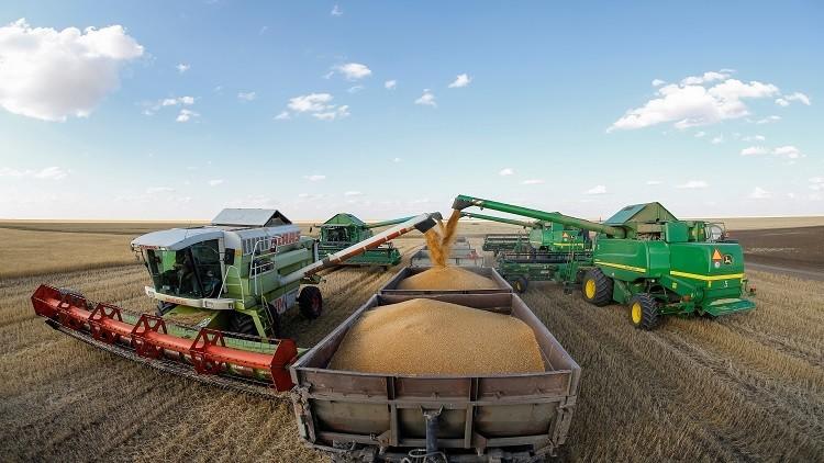 روسيا تستأنف صادرات القمح إلى مصر