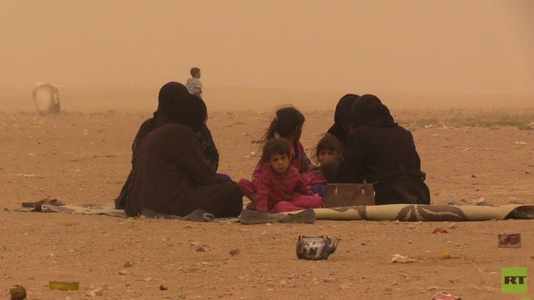 كاميرا RT ترصد تعرض ألف لاجئ لعاصفة رملية
