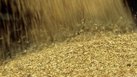 موسكو وكاراكاس توقعان اتفاقا لتوريد القمح