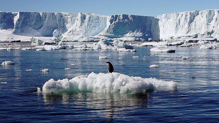 قطعة من الجليد بحجم الهند تختفي من القطبين