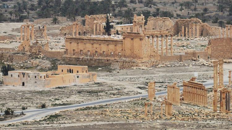 الجيش السوري يستعد لشن هجوم معاكس على