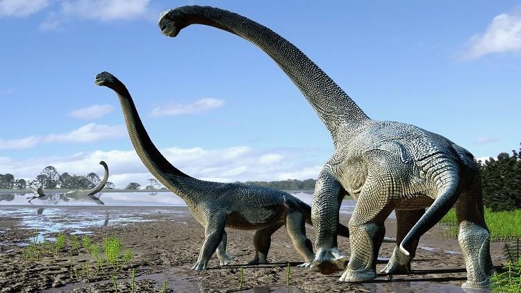 مزاعم بأن الديناصورات عاشت في العصر التوراتي
