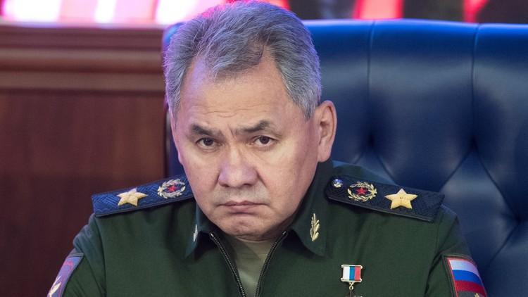 شويغو يشيد باحترافية القيادة العسكرية الروسية