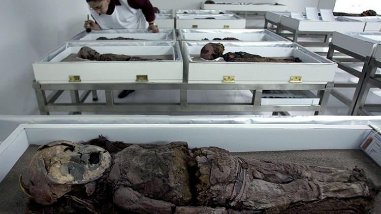 تطبيق اختبارات الحمض النووي على أقدم مومياوات العالم