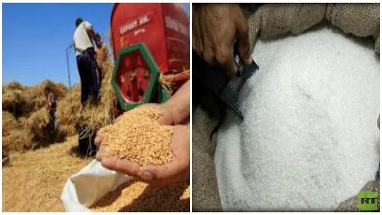 مصر تحل أزمتي القمح والسكر