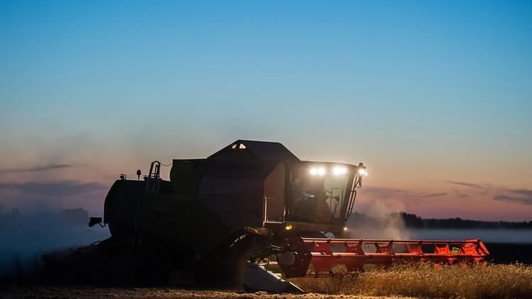 قفزة في صادرات القمح الروسية