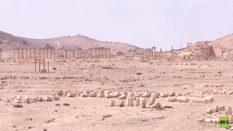 اليونيسكو: حماية آثار تدمر قضية تاريخية