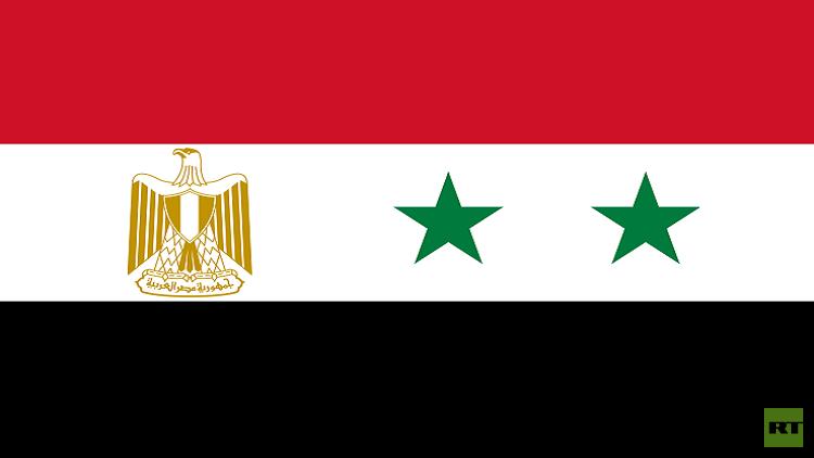 مصر تتحدث عن تسوية سورية مقبلة وعودة للجامعة العربية