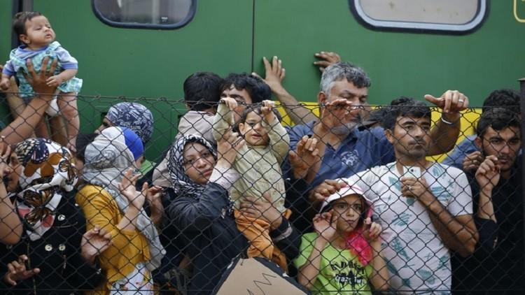 المهاجرون يضربون عن الطعام في المجر