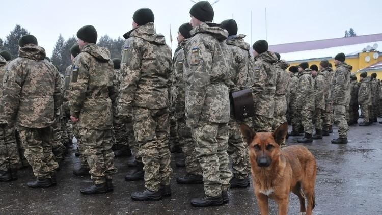 الدفاع الأوكرانية مستعدة لوقف نار جديد في دونباس