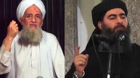 """الولايات المتحدة تنبئ باتحاد بين """"داعش"""" و """"القاعدة"""""""