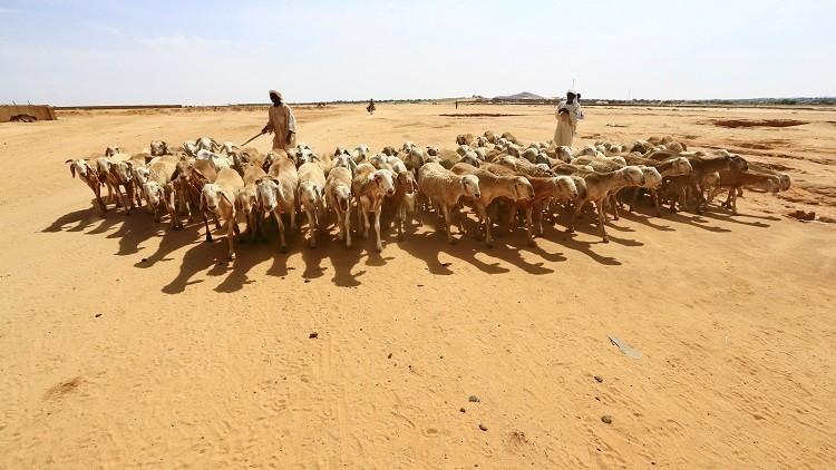 أكثر من 9 قتلى بمواجهات قبلية في دارفور سببها سرقة ماشية