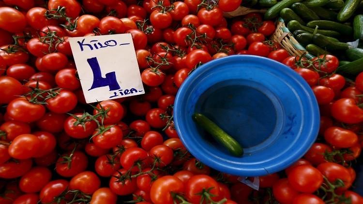 بسبب الحظر الروسي على الطماطم الأتراك  يزرعون الكرنب