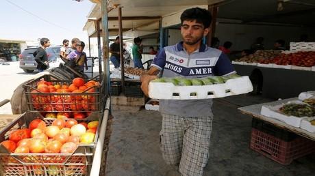 الإمارات تقرر وقف استيراد بعض الخضروات من الأردن